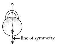MP Board Class 6th Maths Solutions Chapter 13 Symmetry Ex 13.1 3