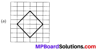 MP Board Class 6th Maths Solutions Chapter 13 Symmetry Ex 13.1 9