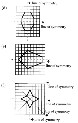 MP Board Class 6th Maths Solutions Chapter 13 Symmetry Ex 13.2 23