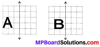 MP Board Class 6th Maths Solutions Chapter 13 Symmetry Ex 13.3 10