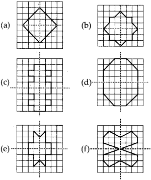 MP Board Class 6th Maths Solutions Chapter 13 Symmetry Ex 13.3 9
