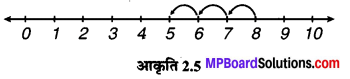 MP Board Class 6th Maths Solutions Chapter 2 पूर्ण संख्याएँ Intext Questions image 5