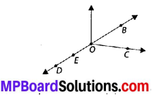 MP Board Class 6th Maths Solutions Chapter 4 Basic Geometrical Ideas Ex 4.1 1