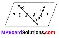 MP Board Class 6th Maths Solutions Chapter 4 Basic Geometrical Ideas Ex 4.1 3