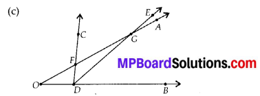 MP Board Class 6th Maths Solutions Chapter 4 Basic Geometrical Ideas Ex 4.3 4