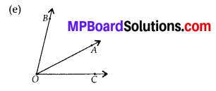 MP Board Class 6th Maths Solutions Chapter 4 Basic Geometrical Ideas Ex 4.3 6
