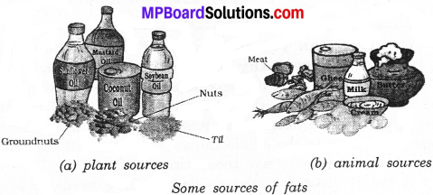 MP Board Class 6th Science Solutions Chapter 2 Components of Food img 12