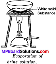 MP Board Class 6th Science Solutions Chapter 5 Separation of Substances img 10