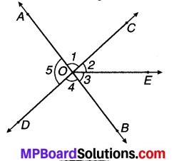 MP Board Class 7th Maths Solutions Chapter 5 रेखा एवं कोण Ex 5.1 4