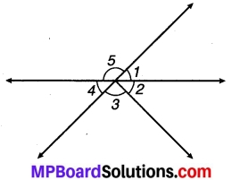 MP Board Class 7th Maths Solutions Chapter 5 रेखा एवं कोण Ex 5.1 5