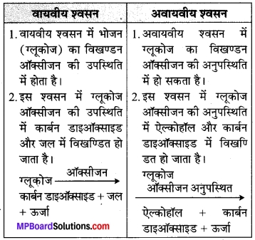MP Board Class 7th Science Solutions Chapter 10 जीवों में श्वसन 1