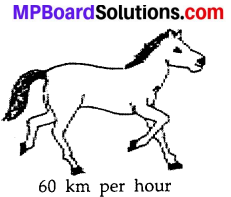 MP Board Class 7th Science Solutions Chapter 13 Motion and Time img 14