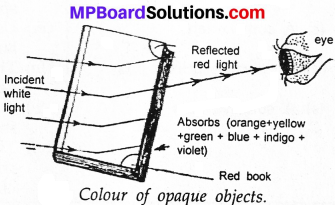 MP Board Class 7th Science Solutions Chapter 15 Light img 2