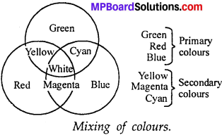 MP Board Class 7th Science Solutions Chapter 15 Light img 23