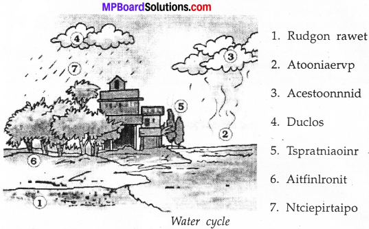 MP Board Class 7th Science Solutions Chapter 16 Water A Precious Resource image 3