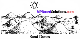 Mp Board Class 8 Science Chapter 7