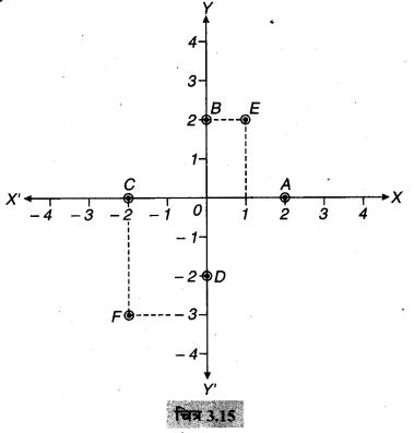 MP Board Class 9th Maths Solutions Chapter 3 निर्देशांक ज्यामिति Ex 3.3 13