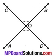 MP Board Class 9th Maths Solutions Chapter 6 रेखाएँ और कोण Ex 6.3 12