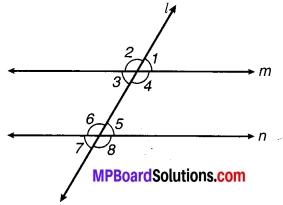 MP Board Class 9th Maths Solutions Chapter 6 रेखाएँ और कोण Ex 6.3 16