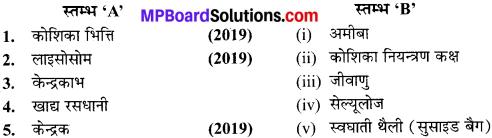 MP Board Class 9th Science Solutions Chapter 5 जीवन की मौलिक इकाई image 4