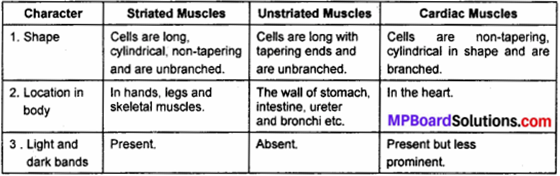 MP Board Class 9th Science Solutions Chapter 6 Tissues 3