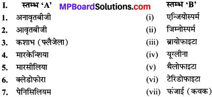 MP Board Class 9th Science Solutions Chapter 7 जीवों में विविधता image 3