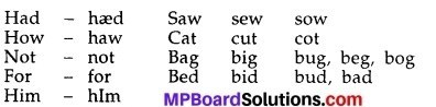 MP Board Class 10th English The Rainbow Solutions Chapter 17 The Bet 1