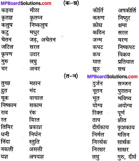 MP Board Class 10th General Hindi व्याकरण विलोम या विपरीतार्थी शब्द img-3