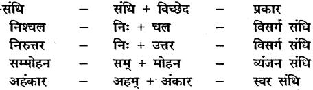 MP Board Class 10th Hindi Vasanti Solutions Chapter 8 अशोक का हृदय-परिवर्तन img-3