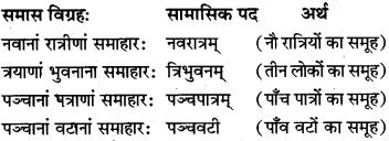 Class 10 Samas Sanskrit MP Board