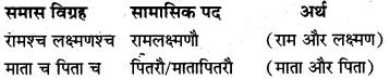 Samas In Sanskrit Class 10 Pdf MP Board
