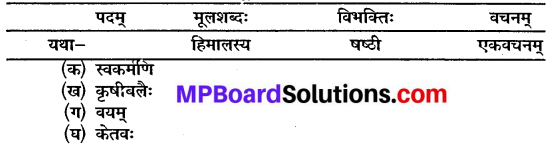 कक्षा 10 संस्कृत पाठ 10 MP Board