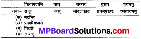 Sanskrit Class 10 Chapter 10 Mp Board