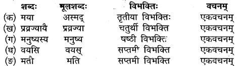Class 10 Sanskrit Chapter 11 MP Board
