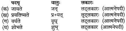 Sanskrit Class 10 Chapter 11 MP Board