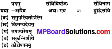Chapter 11 Sanskrit Class 10 MP Board