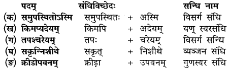 Class 10th Sanskrit Chapter 11 MP Board