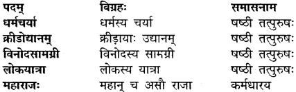 Class 10 Sanskrit Chapter 11 Solutions MP Board