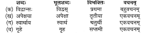 Sanskrit Class 10 Mp Board