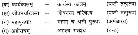MP Board Class 10th Sanskrit Solutions Chapter 14 समयस्य सदुपयोगः img 7