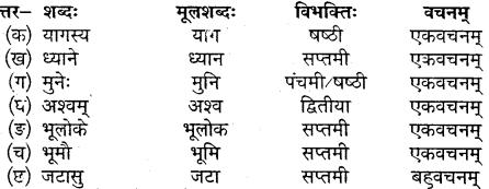 Class 10 Sanskrit Chapter 15 MP Board