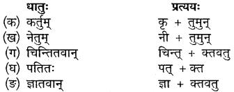 Sanskrit Class 10 Chapter 15 Mp Board