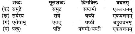 MP Board Class 10th Sanskrit Solutions Chapter 16 ब्रह्मवादिनी मैत्रेयी img 2