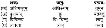 MP Board Class 10th Sanskrit Solutions Chapter 16 ब्रह्मवादिनी मैत्रेयी img 4