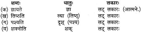 MP Board Class 10th Sanskrit Solutions Chapter 16 ब्रह्मवादिनी मैत्रेयी img 5