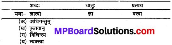MP Board Class 10th Sanskrit Solutions Chapter 16 ब्रह्मवादिनी मैत्रेयी img 6
