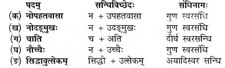 MP Board Class 10th Sanskrit Solutions Chapter 8 सद्वृत्तम् img 7
