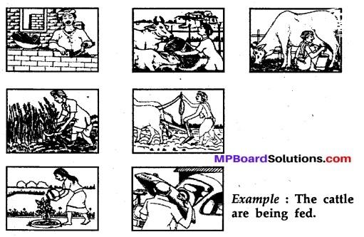 MP Board Class 11th English A Voyage Workbook Solutions Unit 2 Grammar 10