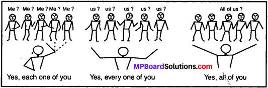 MP Board Class 11th General English Grammar Determiners 2