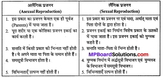 MP Board Class 12th Biology Solutions Chapter 1 जीवों में जनन 1